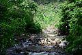 Parque Nacional Huerquehue - Flickr - czdiaz61.jpg