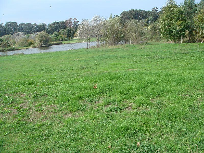 Imagem:Parque da Cidade.JPG
