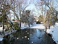 Partly frozen lake outside Colchester General Hospital - geograph.org.uk - 1626305.jpg