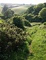 Path, upper Cockington valley - geograph.org.uk - 815444.jpg