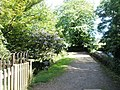 Path just past Dunster Water Mill - geograph.org.uk - 925238.jpg