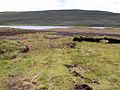 Peat cuttings, Easky Lough - geograph.org.uk - 1393038.jpg