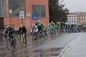 2013 Milan–San Remo - The peloton in Savona