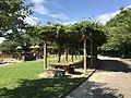 Pergola in Suwa Park in Omuta, Fukuoka.jpg