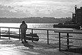 Pescador desenleando a rede no porto de Ferrol, Galiza.jpg