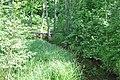 Pietēnupe, Ropažu pagasts, Ropažu novads, Latvia - panoramio.jpg
