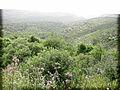 PikiWiki Israel 28856 Mount Carmel.jpg