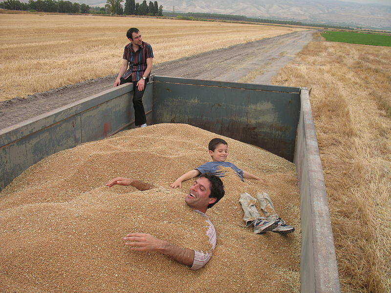 File:PikiWiki Israel 38203 Swimming in Wheat Pool.jpg