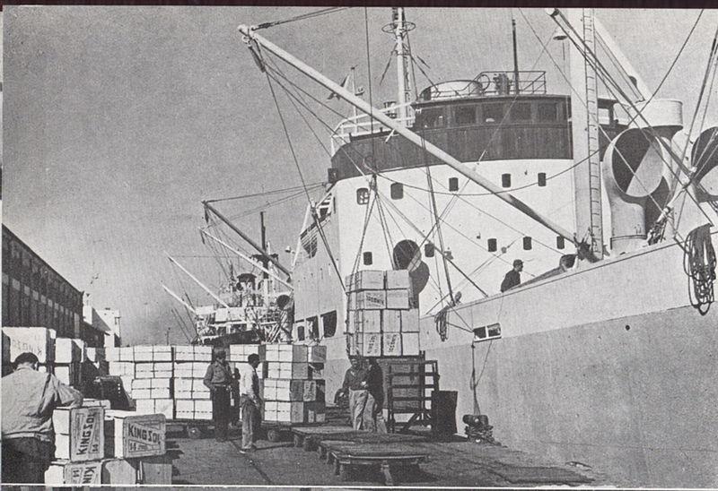 טעינת פרי הדר בנמל