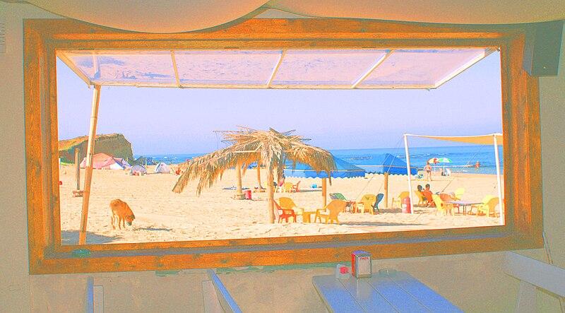 חוף מכמורת