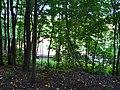 Pirna, Germany - panoramio (529).jpg