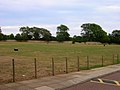 Playing Field, Cardinal Newman School - geograph.org.uk - 216659.jpg