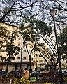 Plaza Las Delicias de Sabana Grande 2.jpg