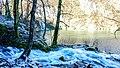Plitvice lakes in winter time.jpg