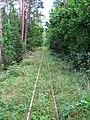 Podlaskie - Czarna Bialostocka - Knyszyn Forest - rt. Studzianki via Ozynnik - KFNGR xing - NW.JPG