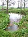 Pond at Mowlish - geograph.org.uk - 155490.jpg