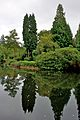 Pond at Tatton Park 5.jpg
