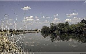 Banatski Brestovac - Ponjavica river