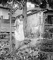 Portrait, woman, yard, garden, booth Fortepan 3755.jpg