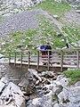 Puente sobre el río Bulnes.JPG