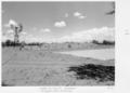 Queensland State Archives 5341 Watering facility Kalboora Thargominda Eromanga January 1955.png