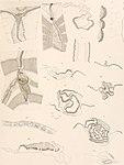 Résultats du voyage du S.Y. Belgica en 1897-1898-1899 - sous le commandement de A. de Gerlache de Gomery. Rapports scientifiques publiés aux frais du gouvernement belge, sous la direction de la (14577364559).jpg
