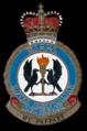 RAAF Wagga COA.png