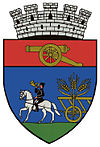 Coat of arms of Târgu Secuiesc