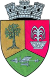 Coat of arms of Geoagiu