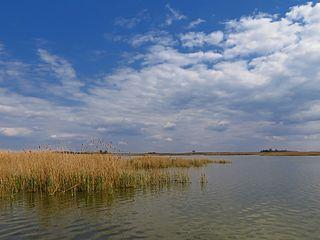 Ludaš Lake