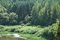 Rahachow District, Belarus - panoramio (9).jpg