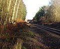 Railway line between Sandhurst and Crowthorne - geograph.org.uk - 653378.jpg