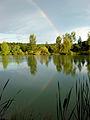 Rainbow in the pond (2331666810).jpg