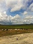 Ream, Cambodia - panoramio (42).jpg