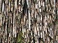 Reed roof - Flickr - KHoffmanDC.jpg
