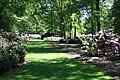 Rhododendronpark Bremen 20090513 203.JPG