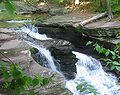 Ricketts Glen State Park Murray Reynolds Falls 1.jpg