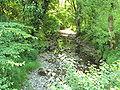 River Alyn, Cilcain - DSC06089.JPG