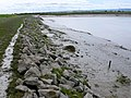 River Parrett near Dunball - geograph.org.uk - 1500075.jpg
