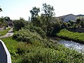River Yeo in Raleigh - geograph.org.uk - 1348818.jpg