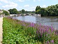 Riverside at Richmond - geograph.org.uk - 508135.jpg