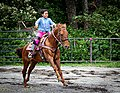 Rodeo in Panama 17.jpg