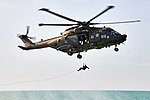 Royal Navy and Royal Marines train alongside partner naval forces MOD 45162834.jpg