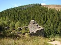 Ruined building at Can-trybedd - geograph.org.uk - 268225.jpg