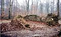 Ruines de la chapelle de Pontpierre.jpg