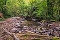 Ruisseau d'Audiernes 03.jpg