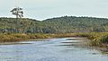 Ruisseau du Lac à la Loutre - Gatineau Park, Quebec 02.jpg