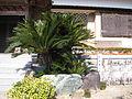 Ryugenji, in Toyokawa 9.jpg