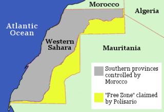 2011 Western Saharan protests