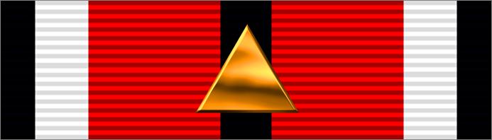 SAME-Karo Award Ribbon